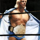 """NATURE BOY"" RIC FLAIR PROFESSIONAL WRESTLER - 8X10 PUBLICITY PHOTO (AZ171)"