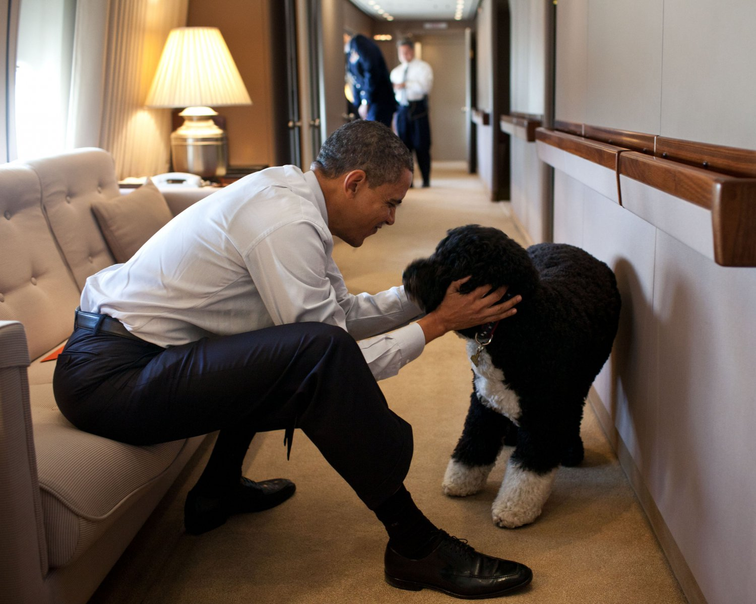 "BARACK OBAMA w/ FAMILY PET DOG ""BO"" ABOARD AIR FORCE ONE - 8X10 PHOTO (ZY-375)"