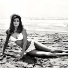 RAQUEL WELCH ACTRESS AND SEX-SYMBOL - 8X10 PUBLICITY PHOTO (SP-002)