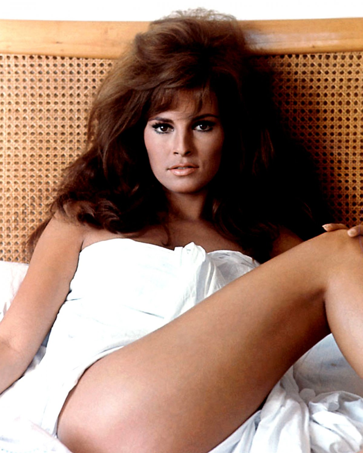 RAQUEL WELCH ACTRESS AND SEX-SYMBOL - 8X10 PUBLICITY PHOTO (SP-012)