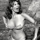 RAQUEL WELCH ACTRESS AND SEX-SYMBOL - 8X10 PUBLICITY PHOTO (SP-014)