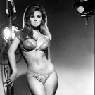 RAQUEL WELCH ACTRESS AND SEX-SYMBOL - 8X10 PUBLICITY PHOTO (SP-025)