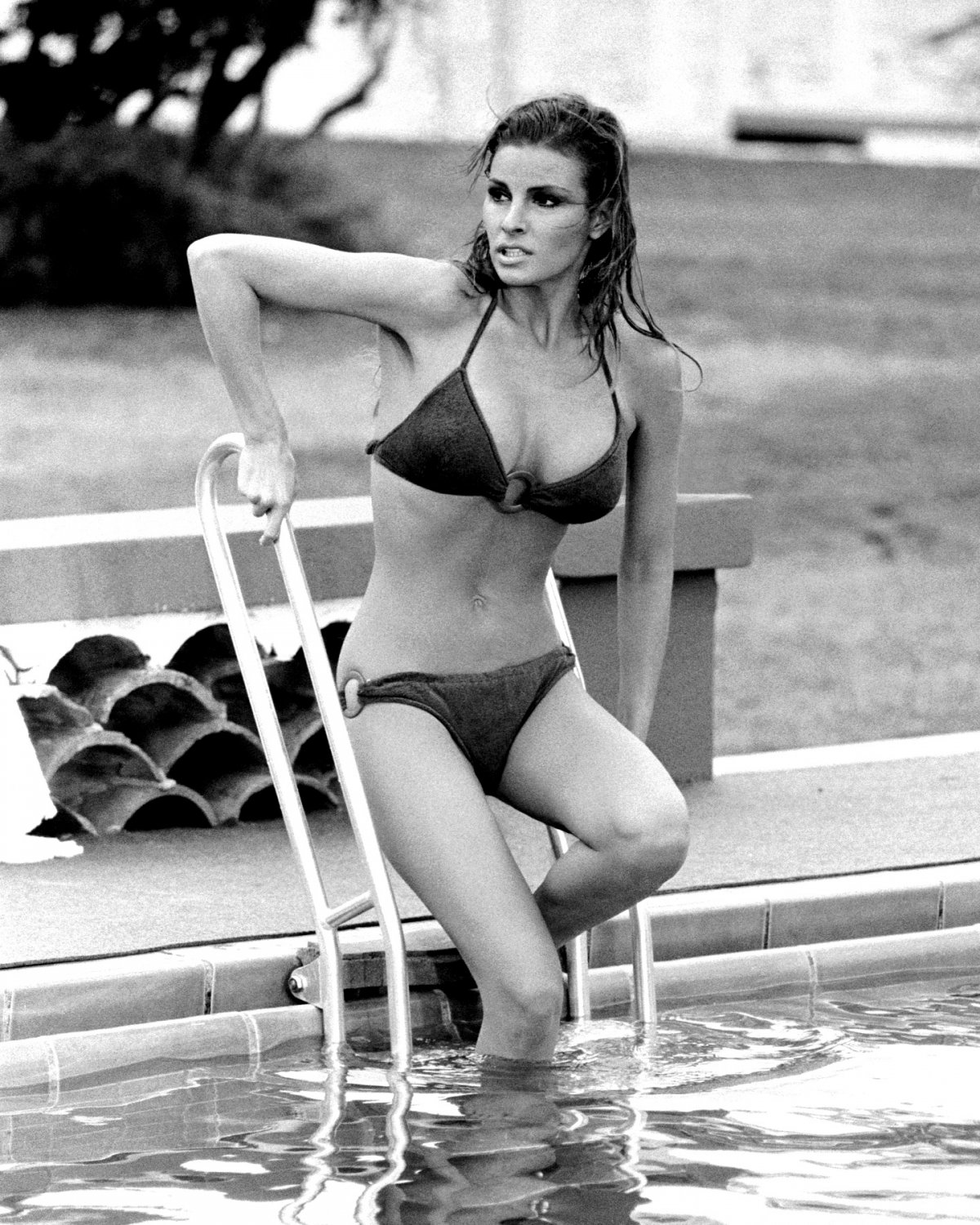 RAQUEL WELCH ACTRESS AND SEX-SYMBOL - 8X10 PUBLICITY PHOTO (ZY-426)