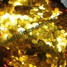 deep Gold hexagon glitter