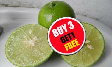 Thai Tropical Organic Lime 50 Seeds,Lemon Seeds (#B 3 G 1 Free)