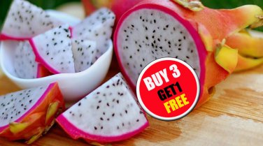 40 Seeds Thai Dragon Fruit Pitaya Pitahaya White Fleshed fresh from Thai grower  (#B 3 G 1 Free)