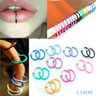 1 Pair Fashion Non Piercing Fake Clip On Septum Clicker Nose Ear Lip Ring Hoop