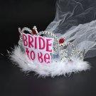 HOT Bride To Be Crown Tiara Veil Bachelorette Girls Night Hen Party Do Dress FT