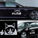 For Auto Car Bumper Window DIY Funny Grumpy Cat  Vinyl Decal Sticker Decal FT68