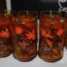 7 Vintage Canadian amber juice glass w. orange & brown maple leaves. 4 circle TM