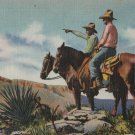 "Postcard Horses Cowboys ""Ranger of the Southwest"" Vintage Linen"