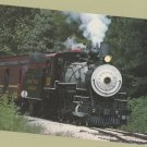 Texas State Railroad's Locomotive #201 Steam Train Postcard