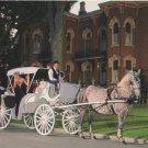 Horse and Carriage Postcard Shipshewana Indiana