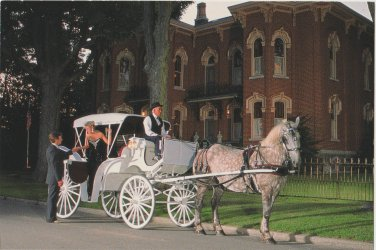 Horse and Carriage Postcard Shipshewana Indiana