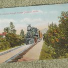 Train Passing Through Orange Grove In Winter Antique Postcard