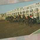 Thoroughbred Horse Racing Postcard Del Mar Lot of 3