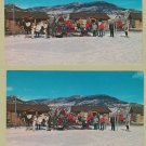 Two Postcards Horse and Sleigh Sled Winter Colorado Sports