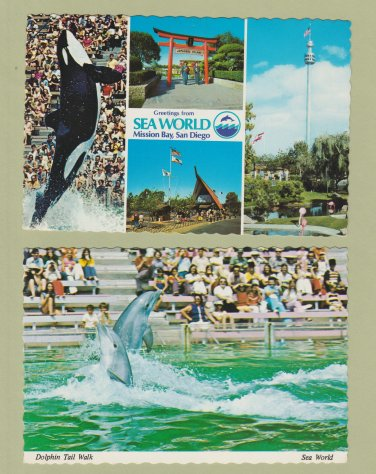Sea World Postcards Mission Bay Dolphins Killer Whale San Diego