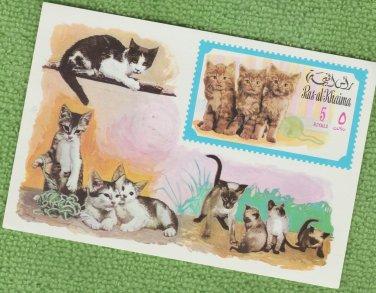 Postage Stamp KITTENS DOMESTIC CATS 1971 Ras-al-Khaima MNH