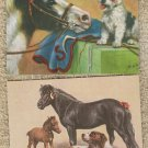 Postcards PONY AND DOGS HORSE SHETLAND PONIES DOGS