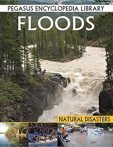 Floods (Pegasus Encyclopedia Library) [Sep 01, 2011] Tomar, Pallabi B. and Iplani