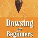 Dowsing for Beginners [Jul 30, 2008] Webster, Richard