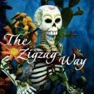 The Zigzag Way [Paperback] [May 09, 2005] Desai, Anita