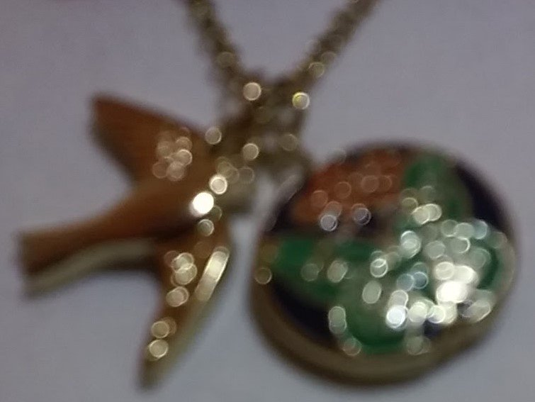 Gold necklace with a butterfly within a circle and a bird charm- 18 inch chain
