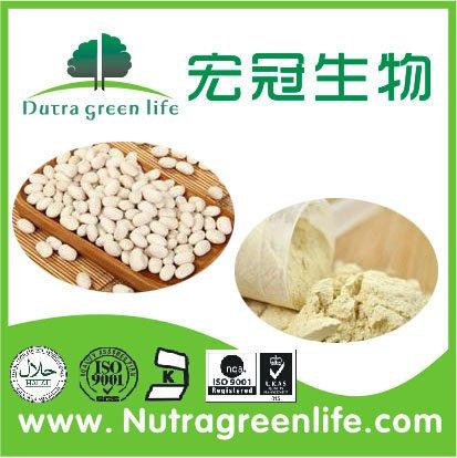 White Kidney Bean Protein