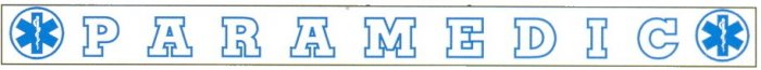 Outside Window Banner Decals - PARAMEDIC