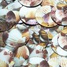 Round Sequin 30mm Scallop Seashell Print Metallic