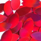 Red Lazersheen Metallic Navette Leaf Sequins 1.5 inch Couture Paillettes