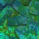 Blue Green Sequin Rectangle Van Gogh Starry Night 1.75 inch Couture Paillettes