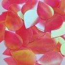 "Teardrop Sequin 1.5"" Coral Rose Ultra Crystal Rainbow Iris Iridescent"