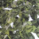 """Sequin Navette Leaf 1.5"""" Lime Green Silver Bird Feathers Print Metallic"""