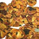 """Teardrop Sequin 1.5"""" Gold Orange Coleus Foliage Leaf Metallic"""