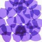 "Sequin Shield 1.5"" Vinyl Go Go Trans Purple. Made in USA"