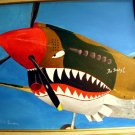 P-40 ww2 airplane painting