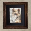 Dictionary Print: Astute Shetland Shepherd, Dog Art Print