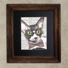 Dictionary Print: Voracious Cornish Rex Cat, Steampunk Cat Artwork