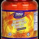 Choc Sprout Rice Protein 2 Lb NOW Foods