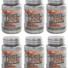 6 Pack Lane Labs Nature's Lining Strengthens the Stomach Wall - 60 Chewable Tabs