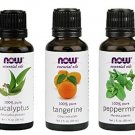 3 Pack Now Foods Mental Focus Oils: Eucalyptus, Tangerine, Peppermint