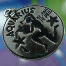 Sterling Silver Zodiac Charm : Aquarius