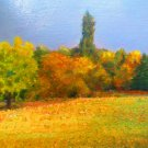 "Oil Painting—Meadow—Landscape Fine Art Oil Painting On Canvas-Size: 14"" x  14"" (35 cm x 35 cm)"