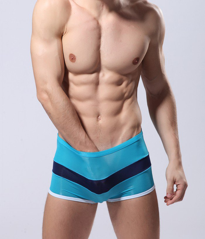 Sky blue Men's sexy underwear transparent mesh gauze boxer briefs underpants #B010