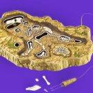 Dinosaur Excavator Game