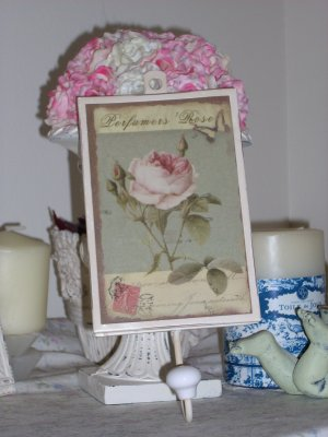 Chic n' Shabby decorative Wall hook