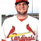 2015 Topps Archives 41 Matt Adams