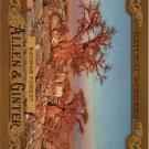 2016 Topps Allen and Ginter Natural Wonders NW11 Baobab Forest